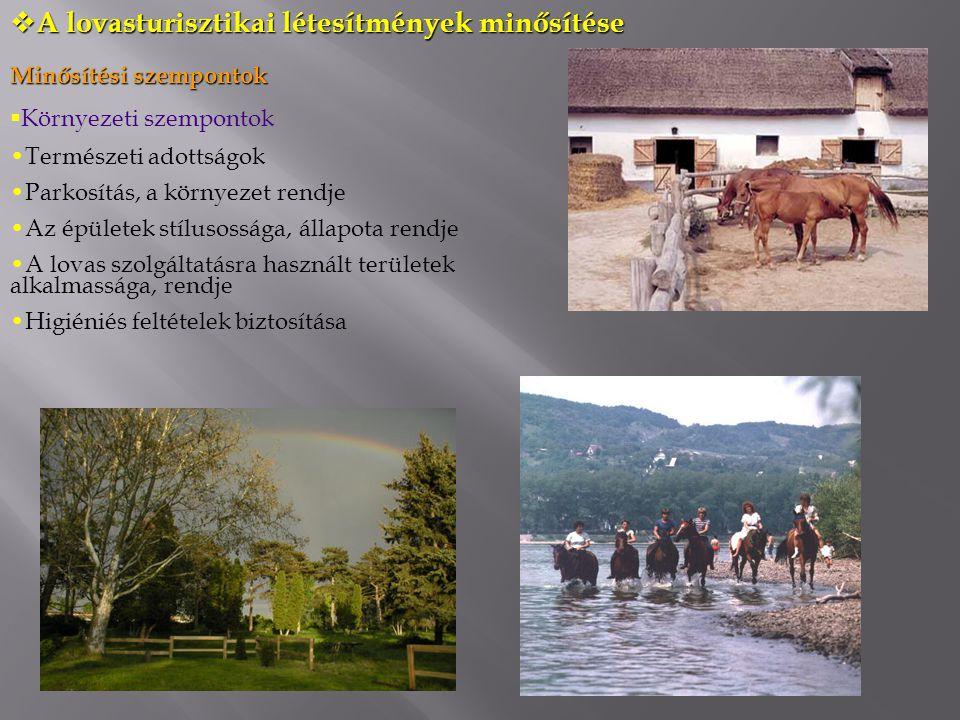  A lovasturisztikai létesítmények minősítése Minősítési szempontok  Környezeti szempontok Természeti adottságok Parkosítás, a környezet rendje Az épületek stílusossága, állapota rendje A lovas szolgáltatásra használt területek alkalmassága, rendje Higiéniés feltételek biztosítása