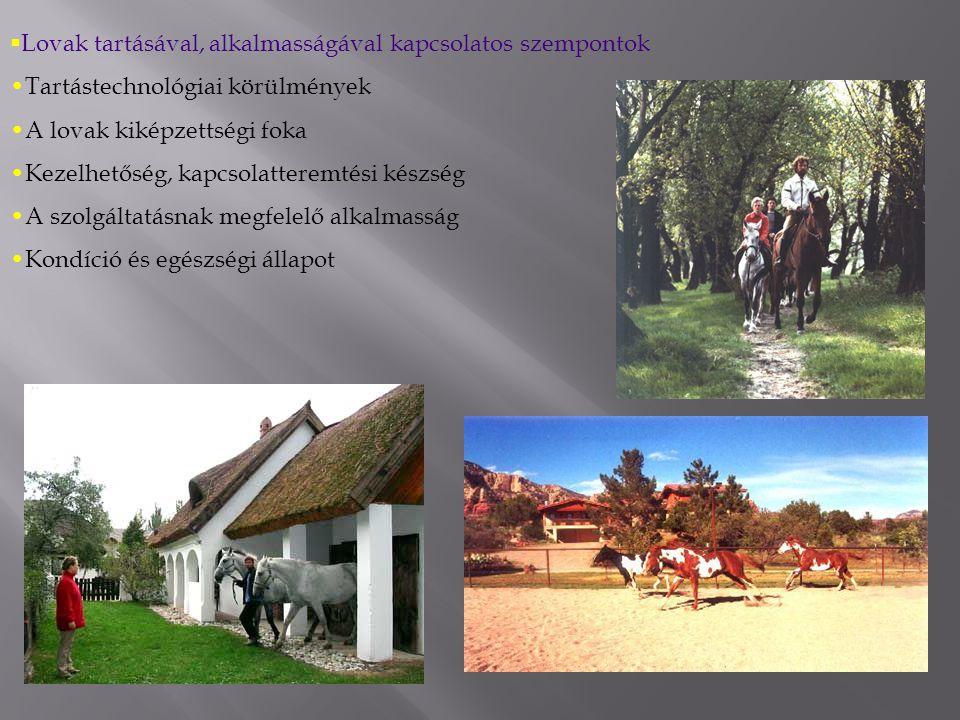  Lovak tartásával, alkalmasságával kapcsolatos szempontok Tartástechnológiai körülmények A lovak kiképzettségi foka Kezelhetőség, kapcsolatteremtési készség A szolgáltatásnak megfelelő alkalmasság Kondíció és egészségi állapot