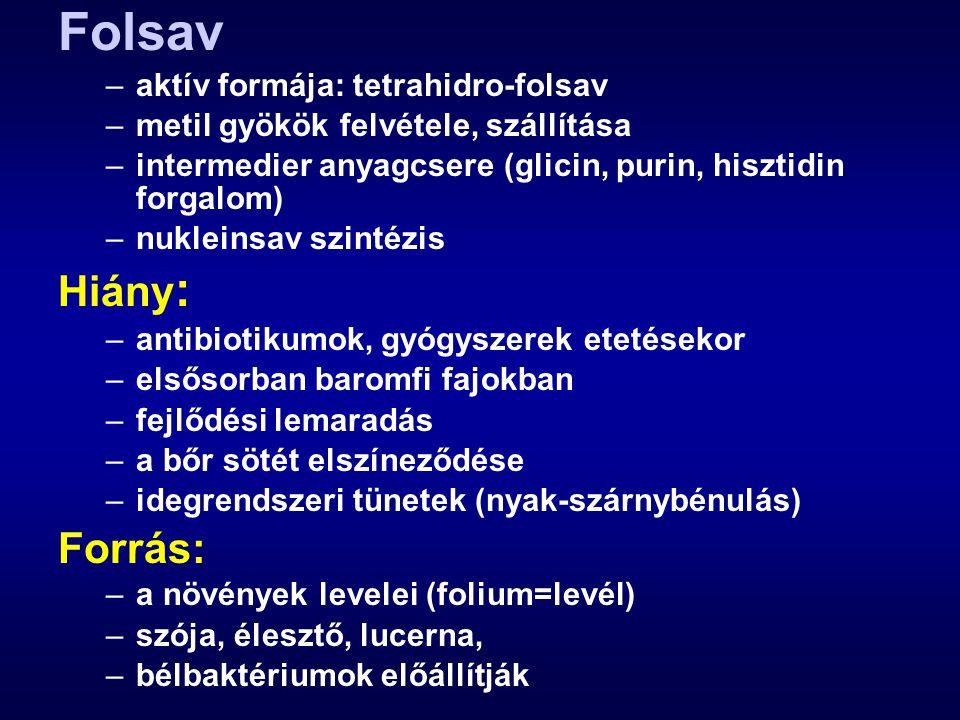 Folsav –aktív formája: tetrahidro-folsav –metil gyökök felvétele, szállítása –intermedier anyagcsere (glicin, purin, hisztidin forgalom) –nukleinsav s