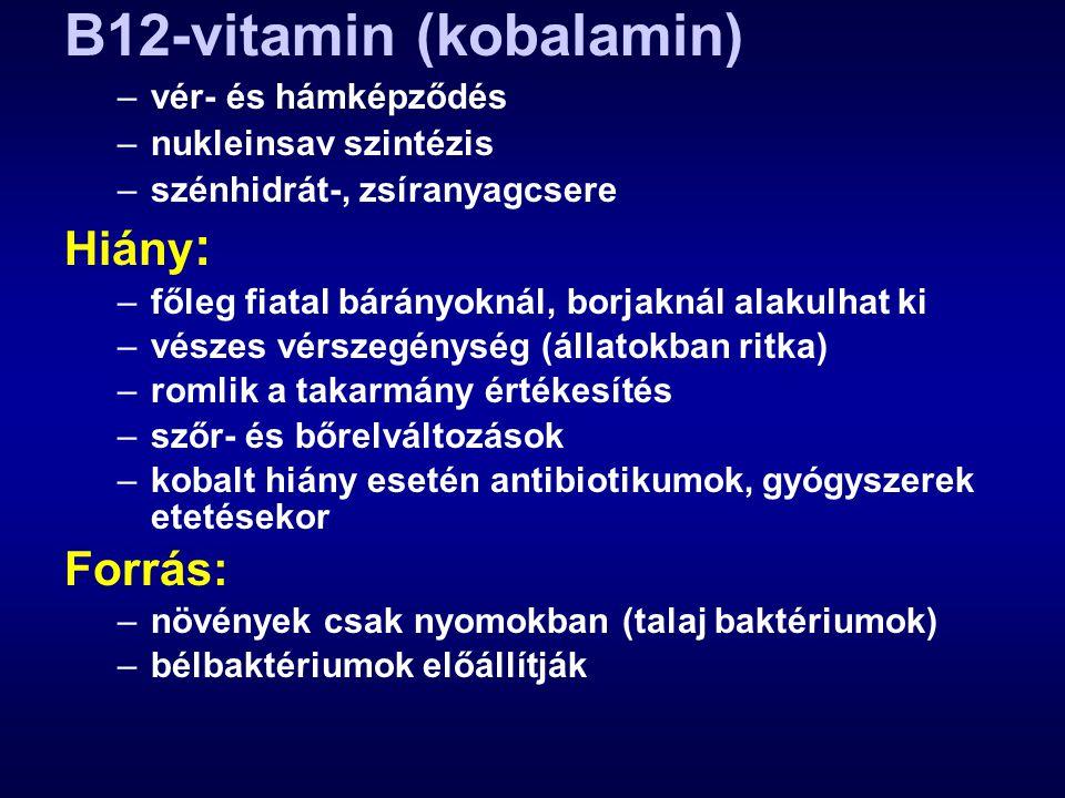 B12-vitamin (kobalamin) –vér- és hámképződés –nukleinsav szintézis –szénhidrát-, zsíranyagcsere Hiány : –főleg fiatal bárányoknál, borjaknál alakulhat