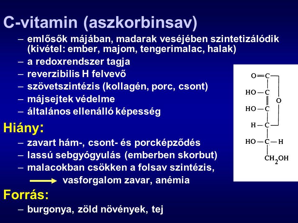 C-vitamin (aszkorbinsav) –emlősők májában, madarak veséjében szintetizálódik (kivétel: ember, majom, tengerimalac, halak) –a redoxrendszer tagja –reve