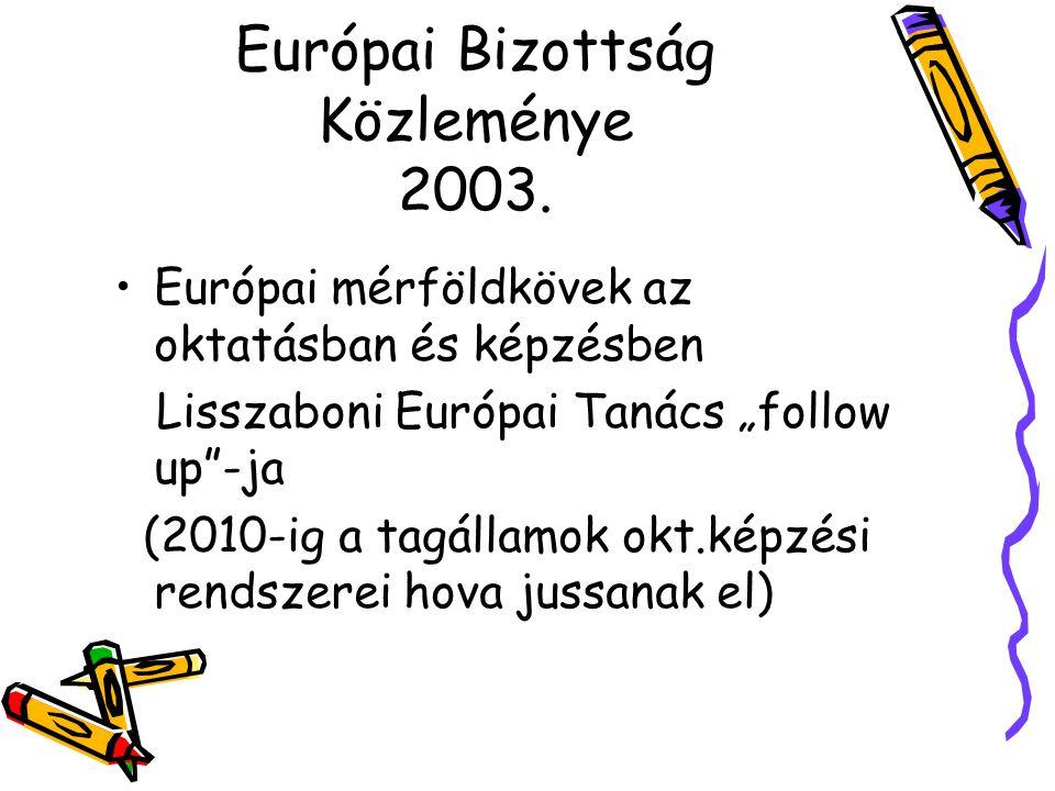 Európai Bizottság Közleménye 2003.