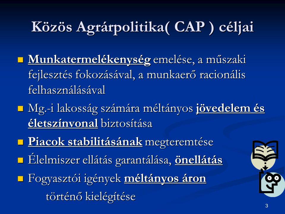 3 Közös Agrárpolitika( CAP ) céljai Munkatermelékenység emelése, a műszaki fejlesztés fokozásával, a munkaerő racionális felhasználásával Munkatermelékenység emelése, a műszaki fejlesztés fokozásával, a munkaerő racionális felhasználásával Mg.-i lakosság számára méltányos jövedelem és életszínvonal biztosítása Mg.-i lakosság számára méltányos jövedelem és életszínvonal biztosítása Piacok stabilitásának megteremtése Piacok stabilitásának megteremtése Élelmiszer ellátás garantálása, önellátás Élelmiszer ellátás garantálása, önellátás Fogyasztói igények méltányos áron Fogyasztói igények méltányos áron történő kielégítése