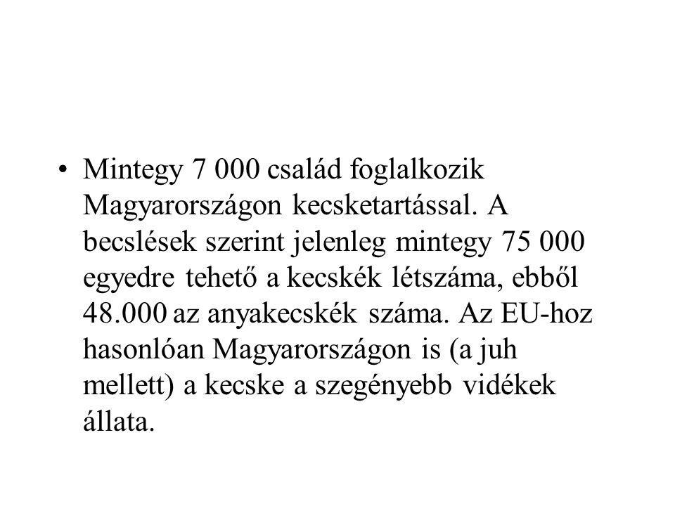 Mintegy 7 000 család foglalkozik Magyarországon kecsketartással. A becslések szerint jelenleg mintegy 75 000 egyedre tehető a kecskék létszáma, ebből