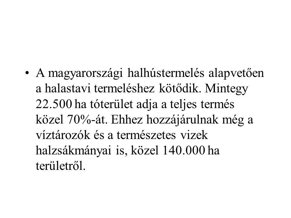 A magyarországi halhústermelés alapvetően a halastavi termeléshez kötődik. Mintegy 22.500 ha tóterület adja a teljes termés közel 70%-át. Ehhez hozzáj