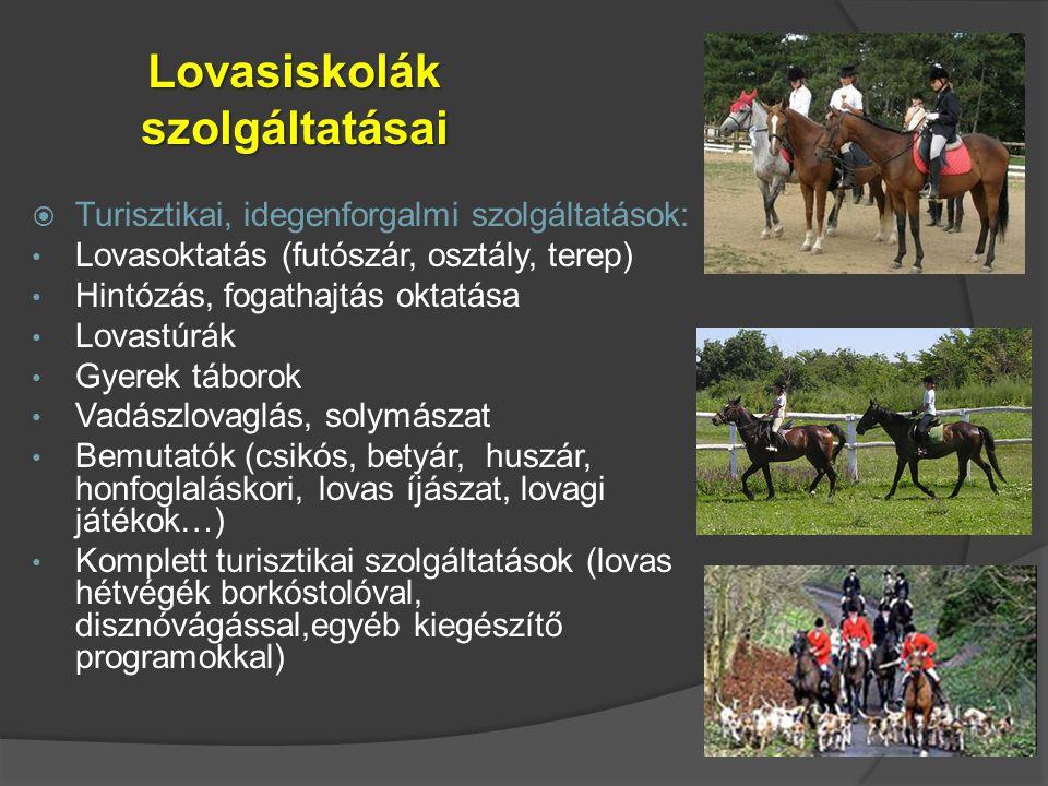 Lovasiskolák szolgáltatásai  Turisztikai, idegenforgalmi szolgáltatások: Lovasoktatás (futószár, osztály, terep) Hintózás, fogathajtás oktatása Lovas