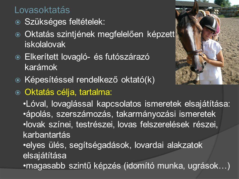 Lovasoktatás  Szükséges feltételek:  Oktatás szintjének megfelelően képzett iskolalovak  Elkerített lovagló- és futószárazó karámok  Képesítéssel