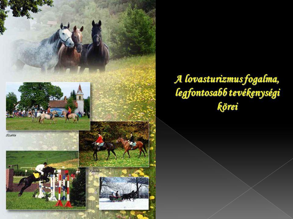 A lovasturizmus fogalma, legfontosabb tevékenységi körei