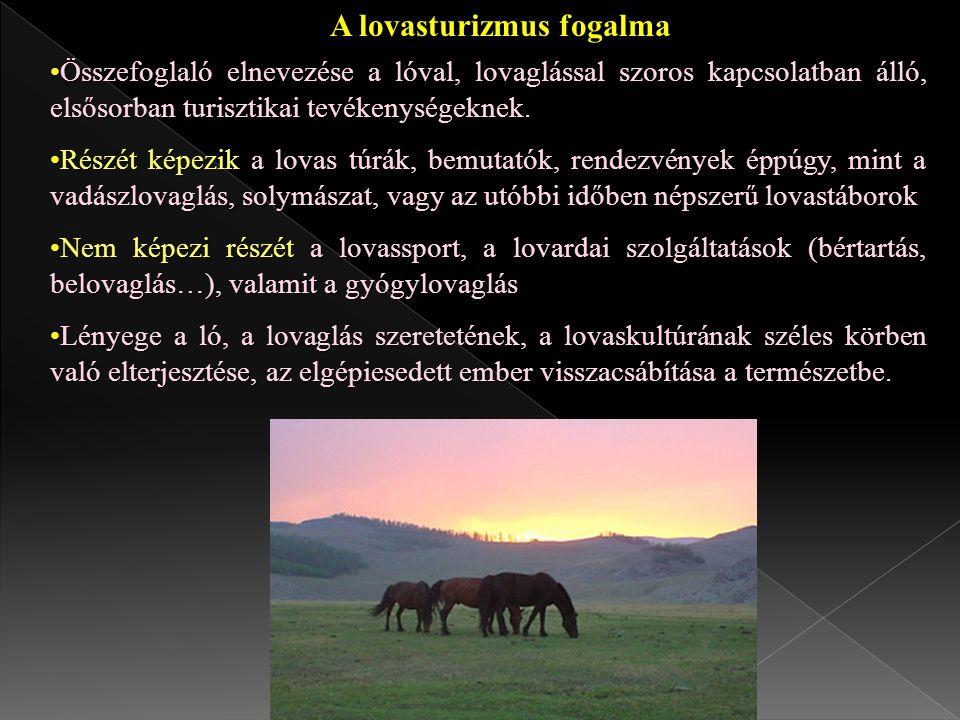 A lovasturizmus fogalma Összefoglaló elnevezése a lóval, lovaglással szoros kapcsolatban álló, elsősorban turisztikai tevékenységeknek.Összefoglaló el