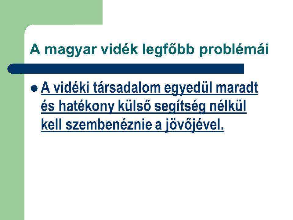 A magyar vidék legfőbb problémái A vidéki társadalom egyedül maradt és hatékony külső segítség nélkül kell szembenéznie a jövőjével.
