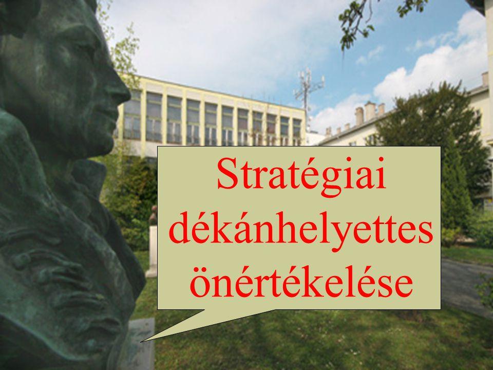 Stratégiai dékánhelyettes önértékelése