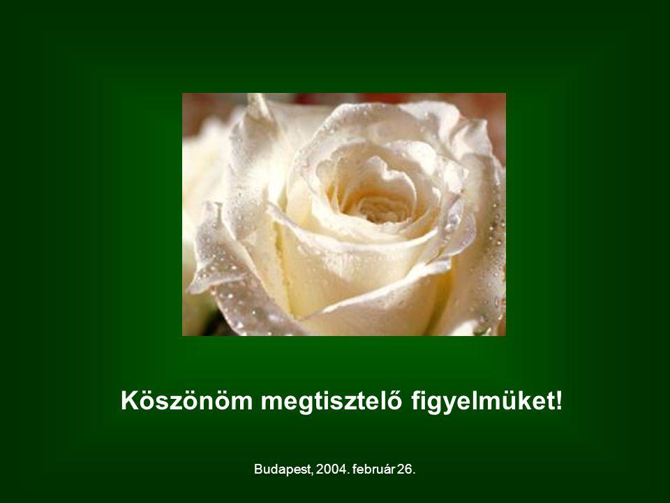 Budapest, 2004. február 26. Köszönöm megtisztelő figyelmüket!