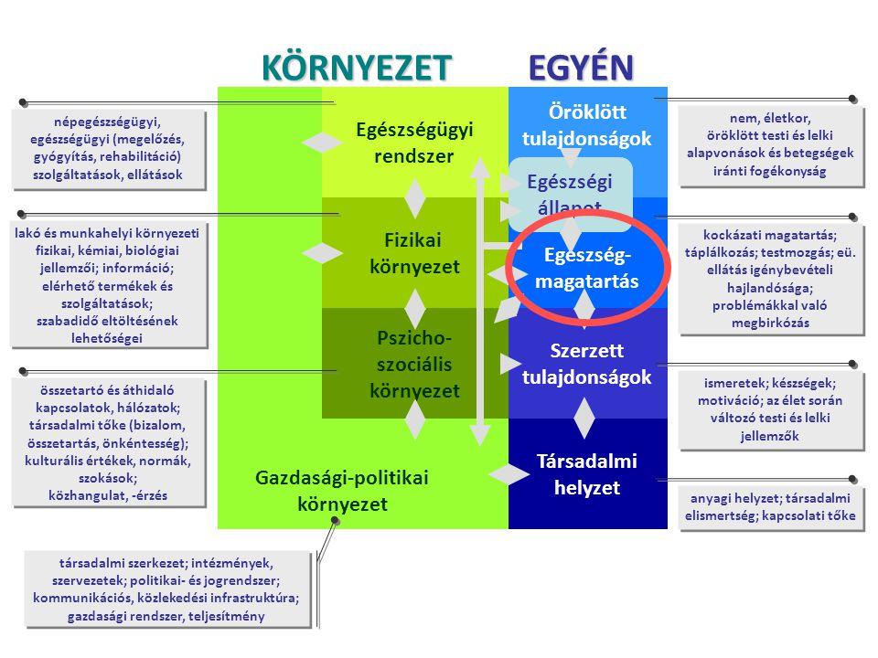 Gazdasági-politikai környezet Szerzett tulajdonságok Öröklött tulajdonságok Egészség- magatartás Egészségügyi rendszer Fizikai környezet Pszicho- szoc