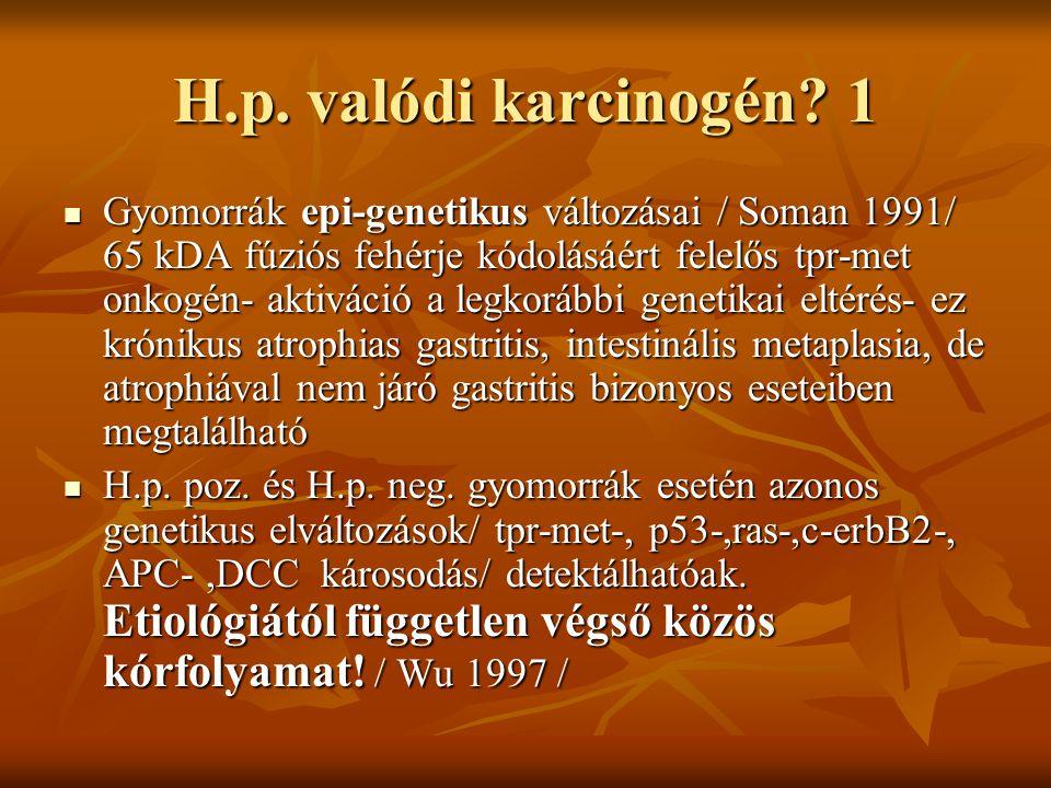H.p. valódi karcinogén? 1 Gyomorrák epi-genetikus változásai / Soman 1991/ 65 kDA fúziós fehérje kódolásáért felelős tpr-met onkogén- aktiváció a legk