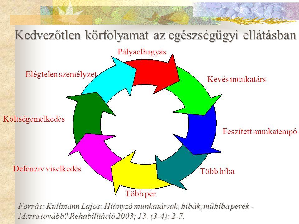 A probléma okai 1) Ellátó rendszerből adódó okok - forráshiány (személyzet, anyagi) - szervezetlenség - infrastruktúra 2) Személyi okok - túlterheltsé