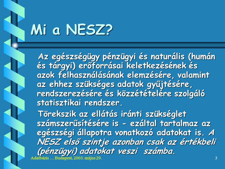Adatbázis … Budapest, 2003. május 29.3 Mi a NESZ? Az egészségügy pénzügyi és naturális (humán és tárgyi) erőforrásai keletkezésének és azok felhasznál