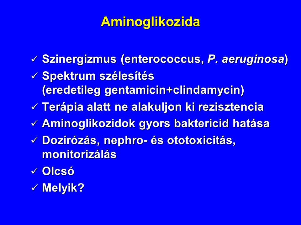 Aminoglikozida Szinergizmus (enterococcus, P. aeruginosa) Szinergizmus (enterococcus, P. aeruginosa) Spektrum szélesítés (eredetileg gentamicin+clinda