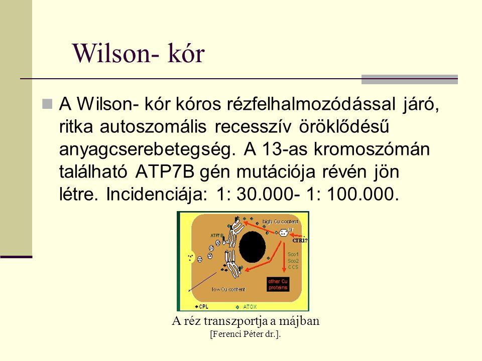 A Wilson- kór kóros rézfelhalmozódással járó, ritka autoszomális recesszív öröklődésű anyagcserebetegség. A 13-as kromoszómán található ATP7B gén mutá