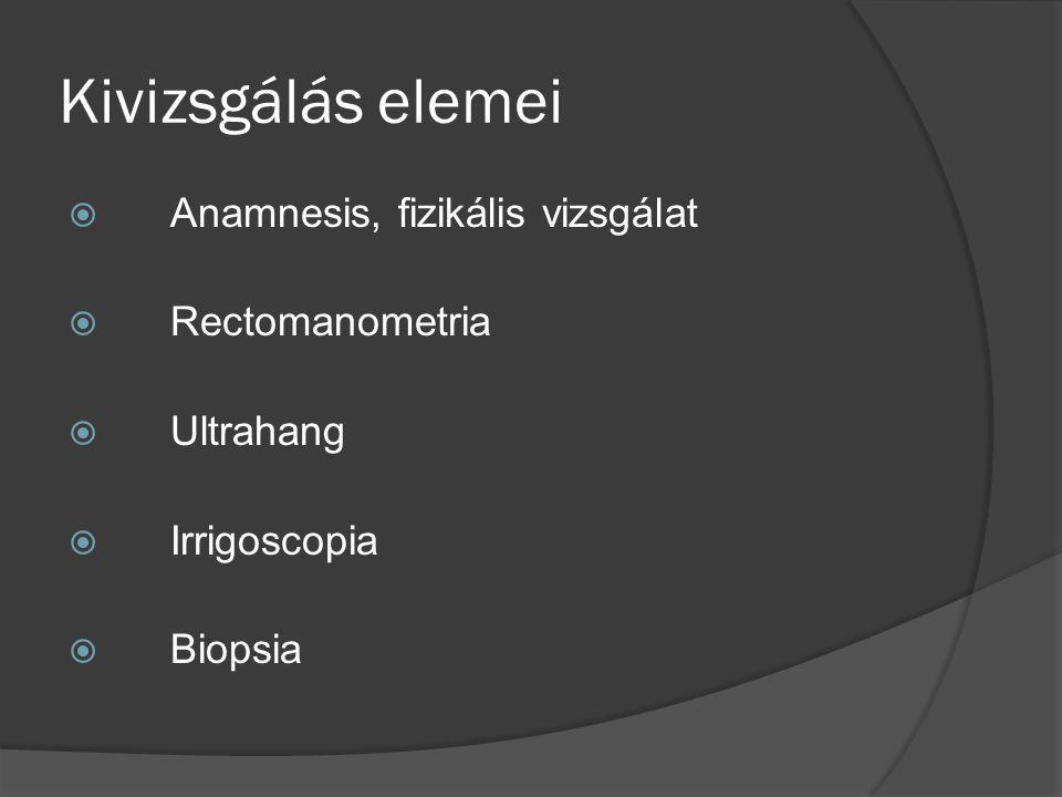 Hisztológia A hosszanti és körkörös izomrétegek erősen hypertrophisáltak.