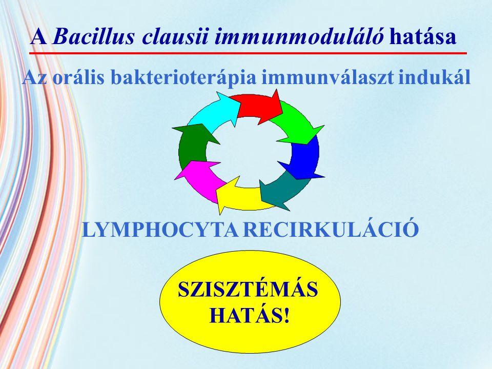 Az orális bakterioterápia immunválaszt indukál SZISZTÉMÁS HATÁS! LYMPHOCYTA RECIRKULÁCIÓ A Bacillus clausii immunmoduláló hatása