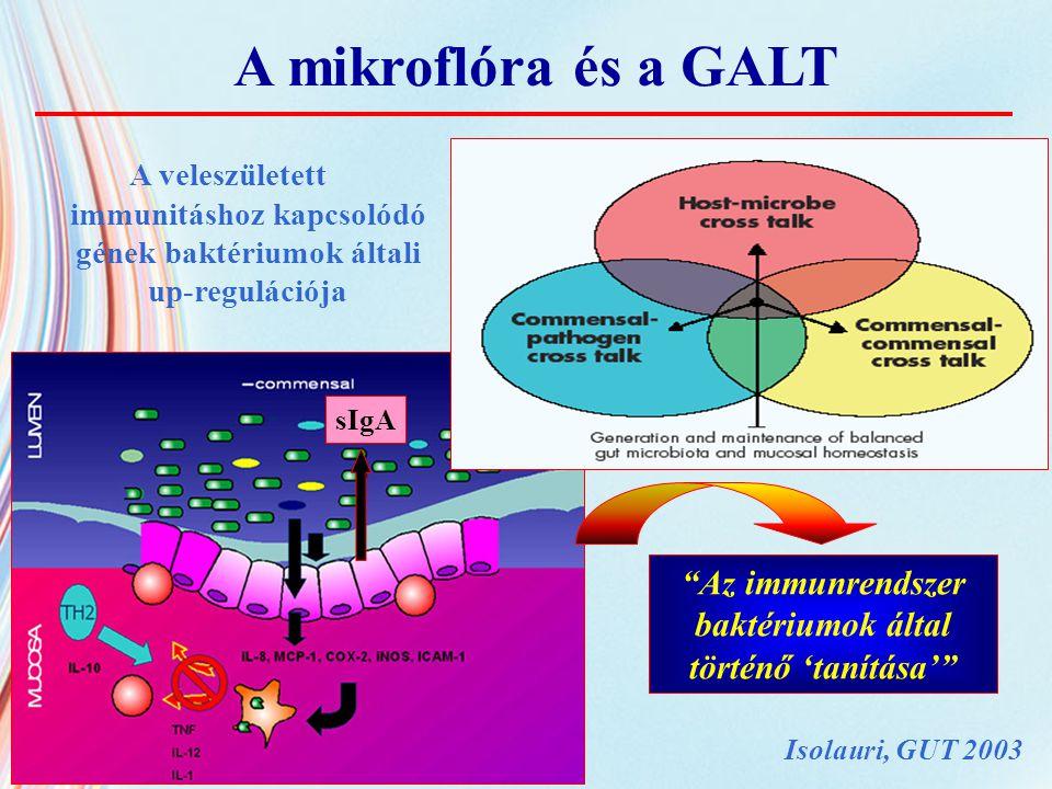 B.clausii ( Enterogermina, Sanofi-Synthelabo OTC, Milan, Italy) 3x10 9 /nap vagy placebo, 7 napon át 16 akut hasmenésben szenvedő gyermek, átlag életkor 3 év az Adenovirusok és a Rotavirusok eradikációja kiegyensúlyozottabb testsúlygyarapodás a bélflóra egyensúlyának gyors helyreállítása tartós B.