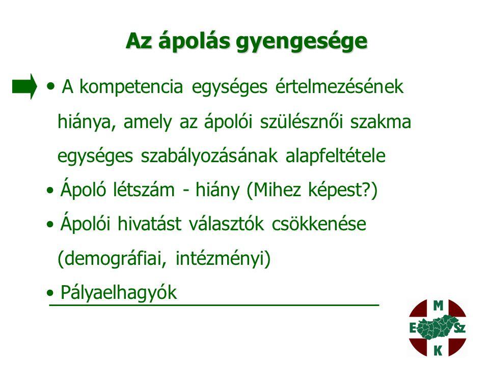 Magyar Egészségügyi Szakdolgozói Kamara SZAKMAI FEJLESZTÉSEK 2.