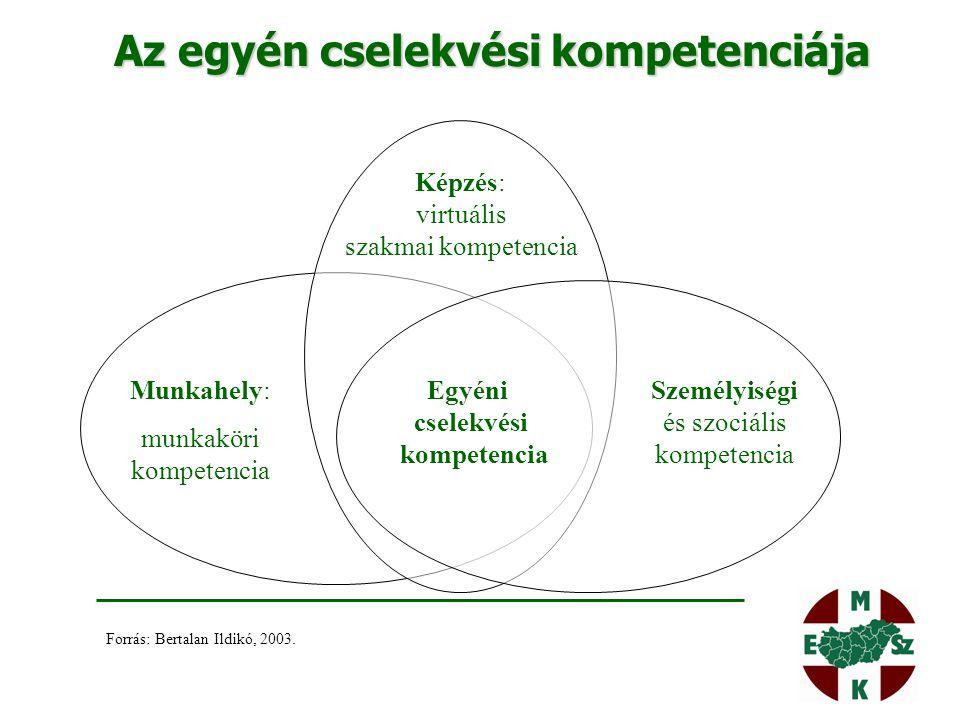 Az egyén cselekvési kompetenciája Munkahely: munkaköri kompetencia Egyéni cselekvési kompetencia Képzés: virtuális szakmai kompetencia Személyiségi és