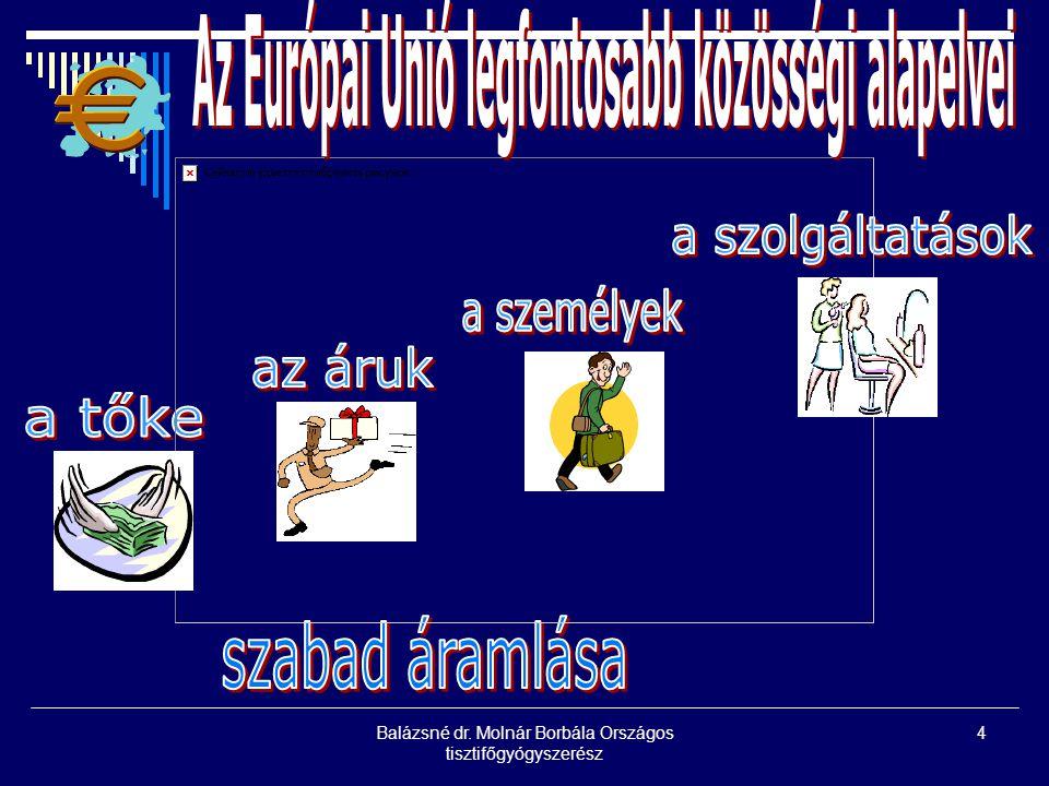 Balázsné dr. Molnár Borbála Országos tisztifőgyógyszerész 4