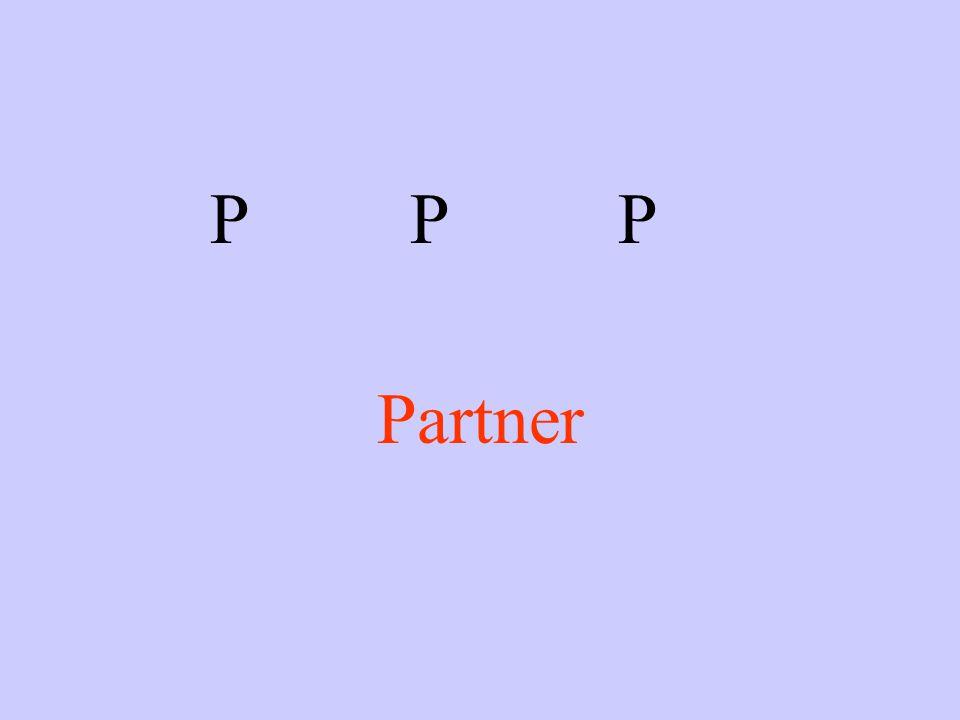 PPP Partner