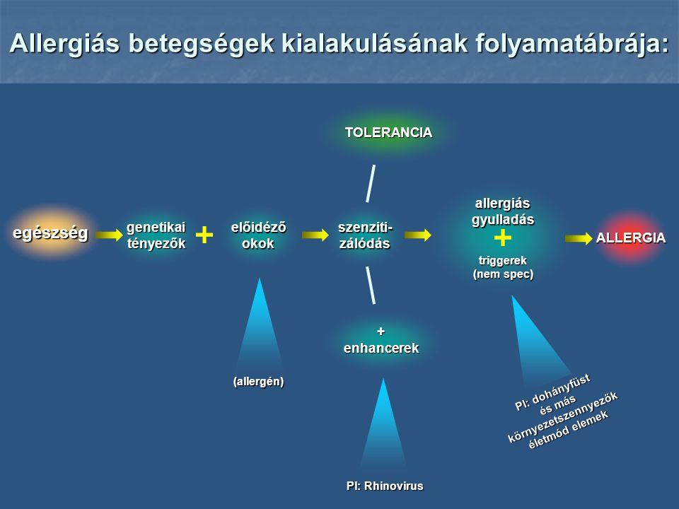 előidéző okok Allergiás betegségek kialakulásának folyamatábrája: egészség szenziti- zálódás ALLERGIA genetikai tényezők TOLERANCIA +enhancerek (allergén) Pl: Rhinovirus triggerek (nem spec) allergiás gyulladás Pl: dohányfüst és más környezetszennyezők életmód elemek