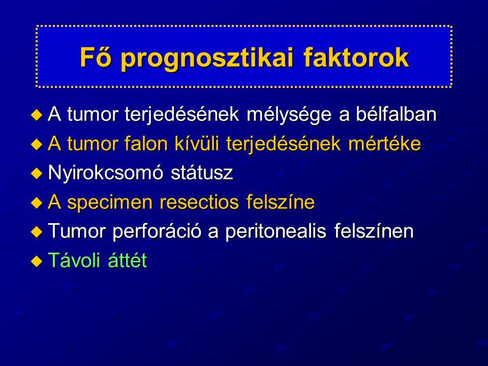  TNM alcsoportok  A túlélés rizikójának különbözősége  Az alkalmazott kezelési módszer különbözősége Fő prognosztikai faktorok következménye