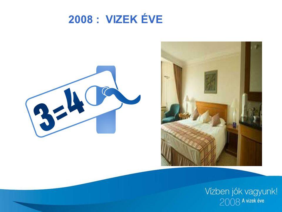2008 : VIZEK ÉVE