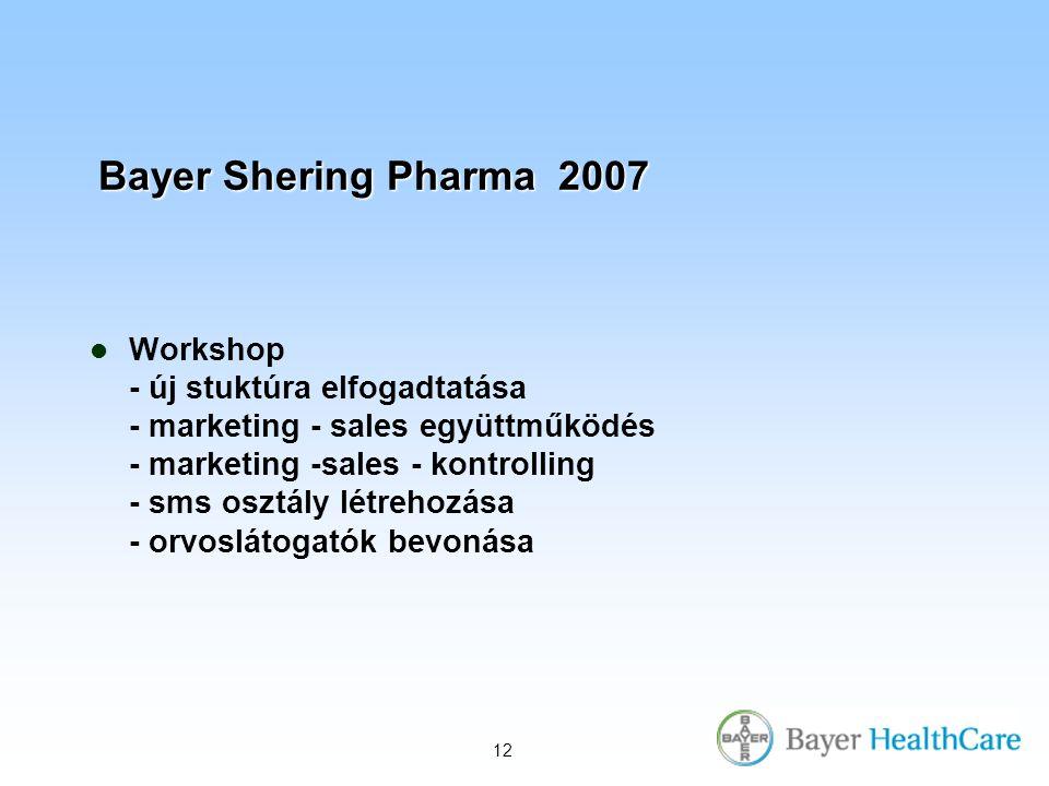 12 Bayer Shering Pharma 2007 Workshop - új stuktúra elfogadtatása - marketing - sales együttműködés - marketing -sales - kontrolling - sms osztály létrehozása - orvoslátogatók bevonása