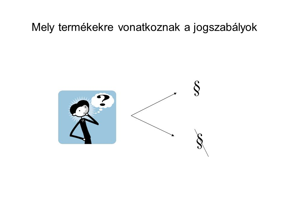 2006.évi XCVIII. törvény 17.
