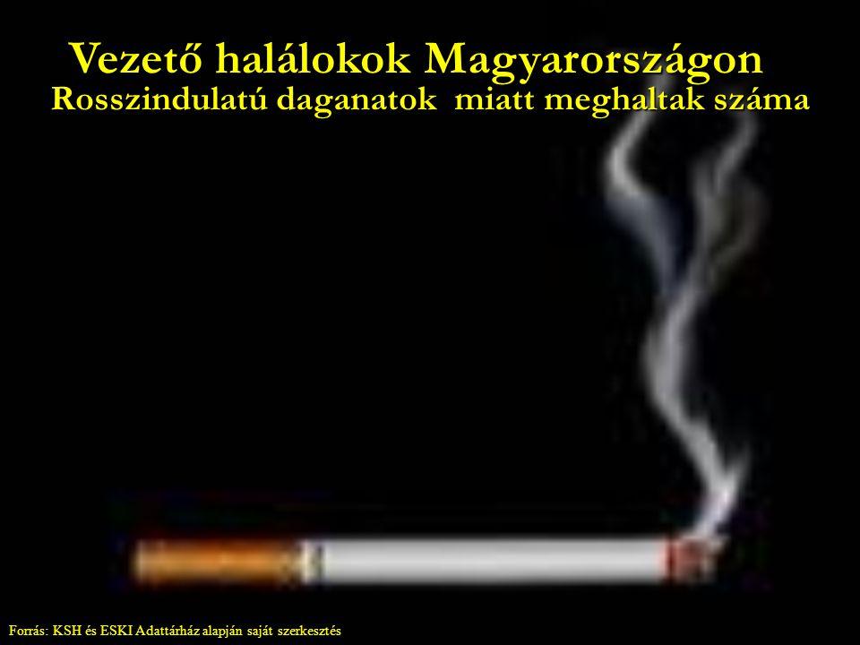 Vezető halálokok Magyarországon Keringési rendszer betegségei miatt meghaltak száma Forrás: KSH és ESKI Adattárház alapján saját szerkesztés