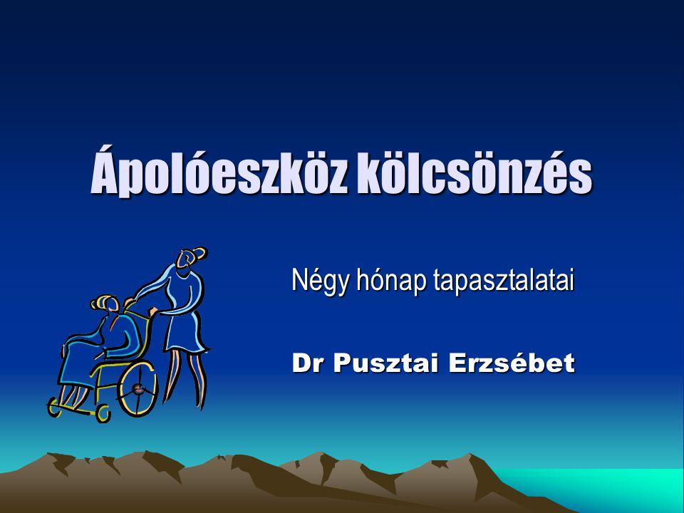 A program lényege KIÍRÓ: Budapest XI.kerület Önkormányzata TÁMOGATÓ: Budapest XI.
