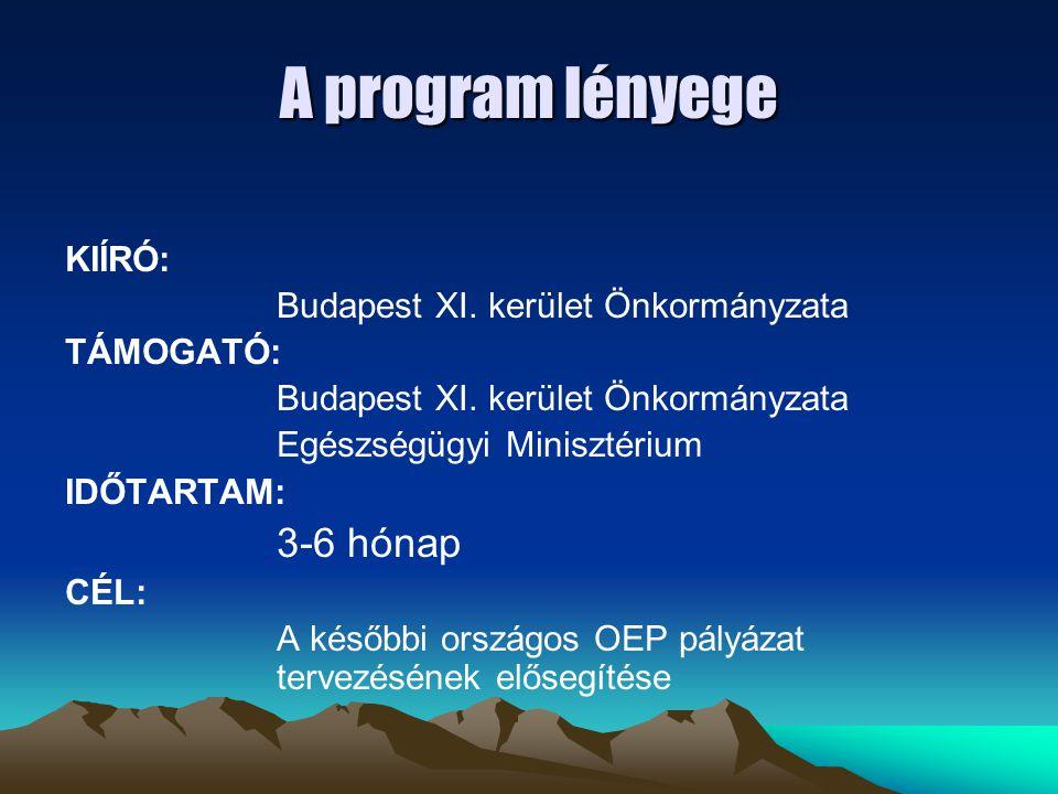 A program lényege KIÍRÓ: Budapest XI. kerület Önkormányzata TÁMOGATÓ: Budapest XI. kerület Önkormányzata Egészségügyi Minisztérium IDŐTARTAM: 3-6 hóna