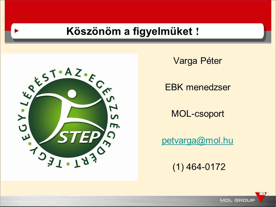 Varga Péter EBK menedzser MOL-csoport petvarga@mol.hu (1) 464-0172 Köszönöm a figyelmüket !