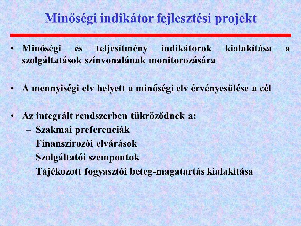 Minőségi indikátor fejlesztési projekt Minőségi és teljesítmény indikátorok kialakítása a szolgáltatások színvonalának monitorozására A mennyiségi elv