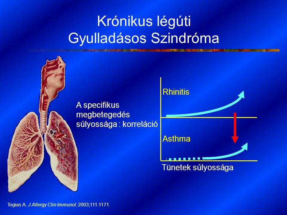 A specifikus megbetegedés súlyossága : korreláció Rhinitis Asthma Tünetek súlyossága Togias A. J Allergy Clin Immunol. 2003;111:1171. Krónikus légúti