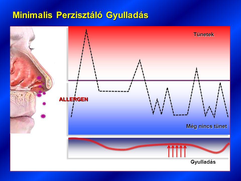A terápia sarokkövei : inhalatív szteroidok ( ICS ) Célok :1.