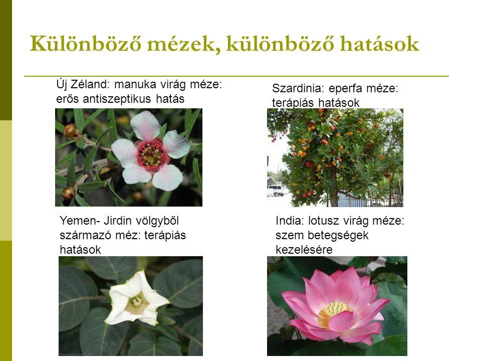 Különböző mézek, különböző hatások Új Zéland: manuka virág méze: erős antiszeptikus hatás Szardinia: eperfa méze: terápiás hatások India: lotusz virág