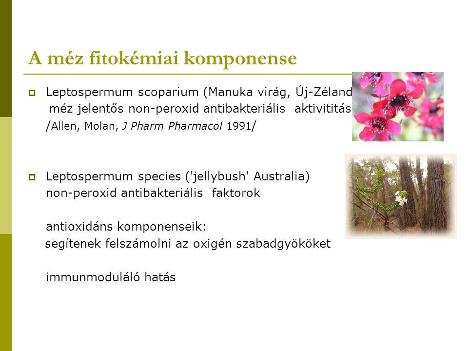A méz fitokémiai komponense  Leptospermum scoparium (Manuka virág, Új-Zéland) méz jelentős non-peroxid antibakteriális aktivititás / Allen, Molan, J