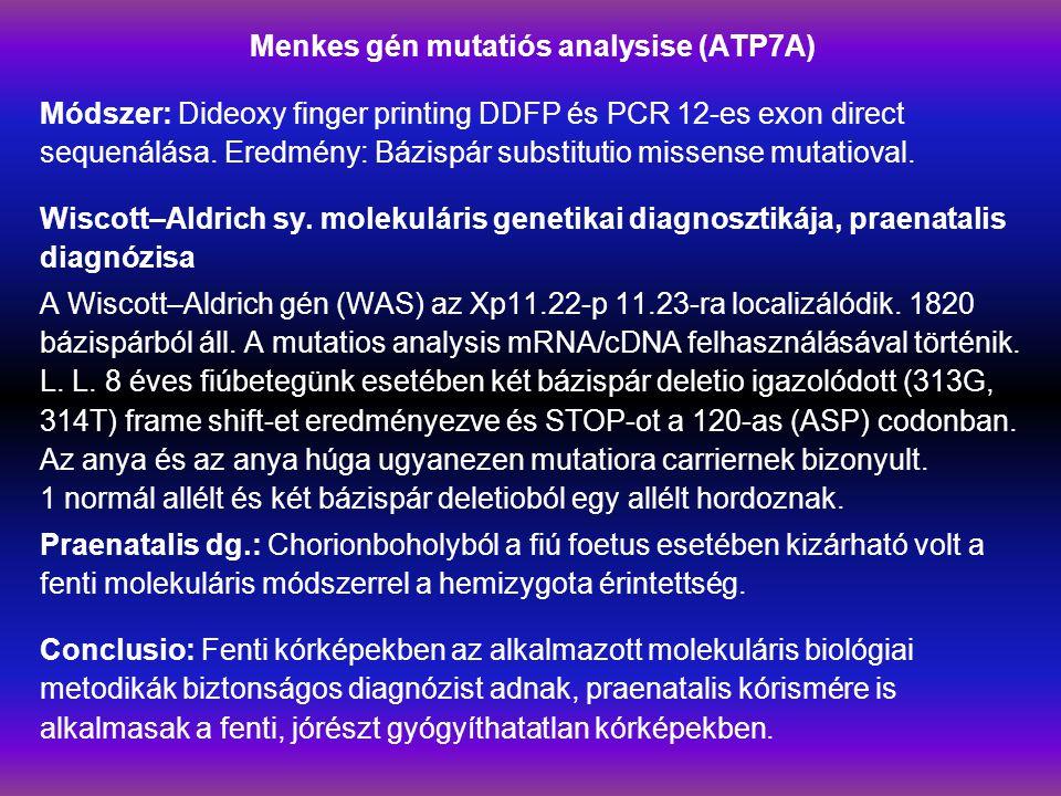 Menkes gén mutatiós analysise (ATP7A) Módszer: Dideoxy finger printing DDFP és PCR 12-es exon direct sequenálása.