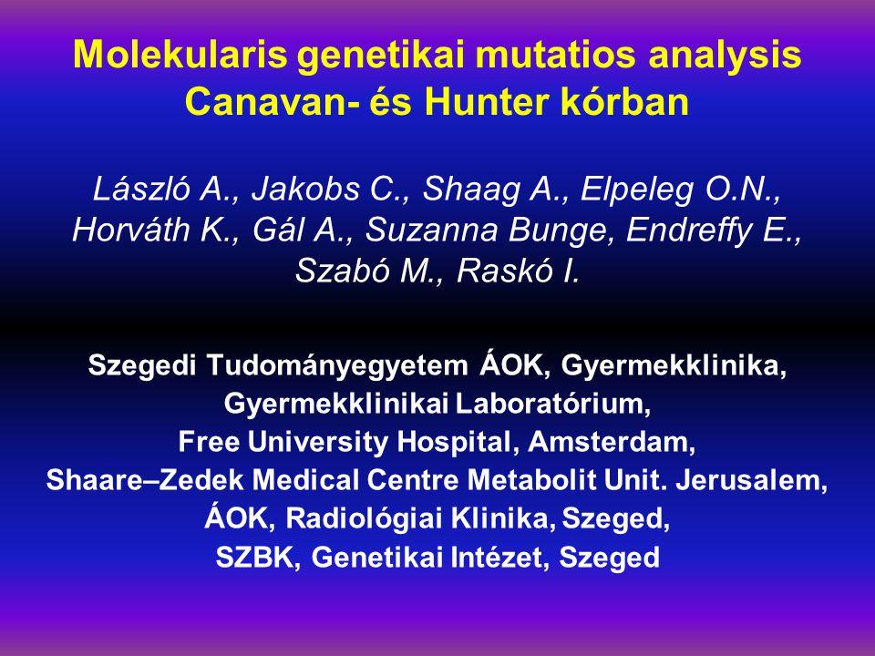 Molekularis genetikai mutatios analysis Canavan- és Hunter kórban László A., Jakobs C., Shaag A., Elpeleg O.N., Horváth K., Gál A., Suzanna Bunge, Endreffy E., Szabó M., Raskó I.