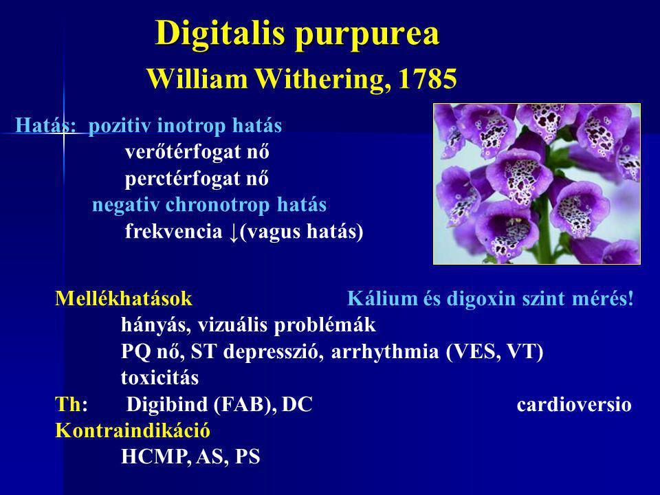 Digitalis purpurea Digitalis purpurea William Withering, 1785 Hatás: pozitiv inotrop hatás verőtérfogat nő perctérfogat nő negativ chronotrop hatás fr