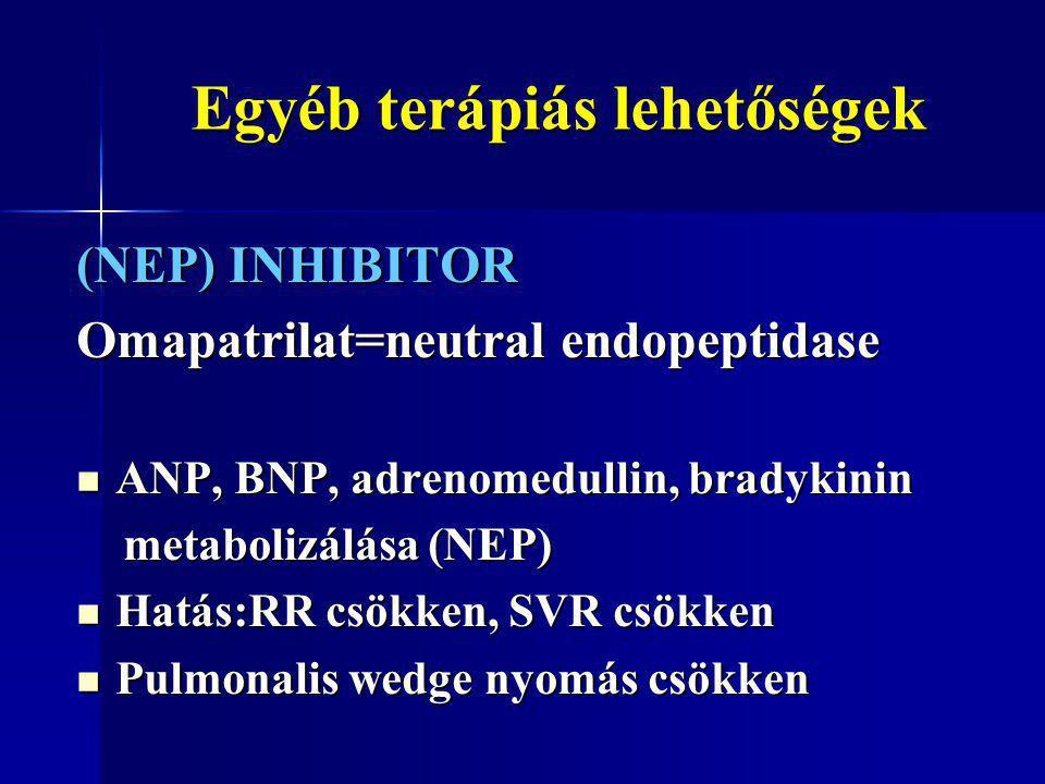 Egyéb terápiás lehetőségek Egyéb terápiás lehetőségek (NEP) INHIBITOR Omapatrilat=neutral endopeptidase ANP, BNP, adrenomedullin, bradykinin ANP, BNP,