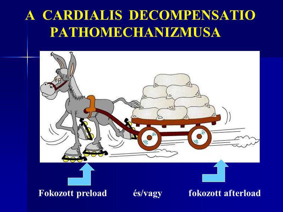 A CARDIALIS DECOMPENSATIO PATHOMECHANIZMUSA Fokozott preload és/vagy fokozott afterload