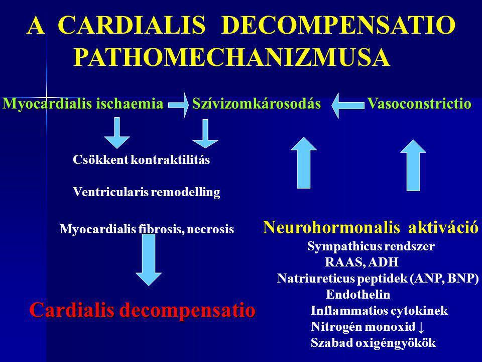 Myocardialis ischaemia Szívizomkárosodás Vasoconstrictio Csökkent kontraktilitás Ventricularis remodelling Myocardialis fibrosis, necrosis Neurohormon