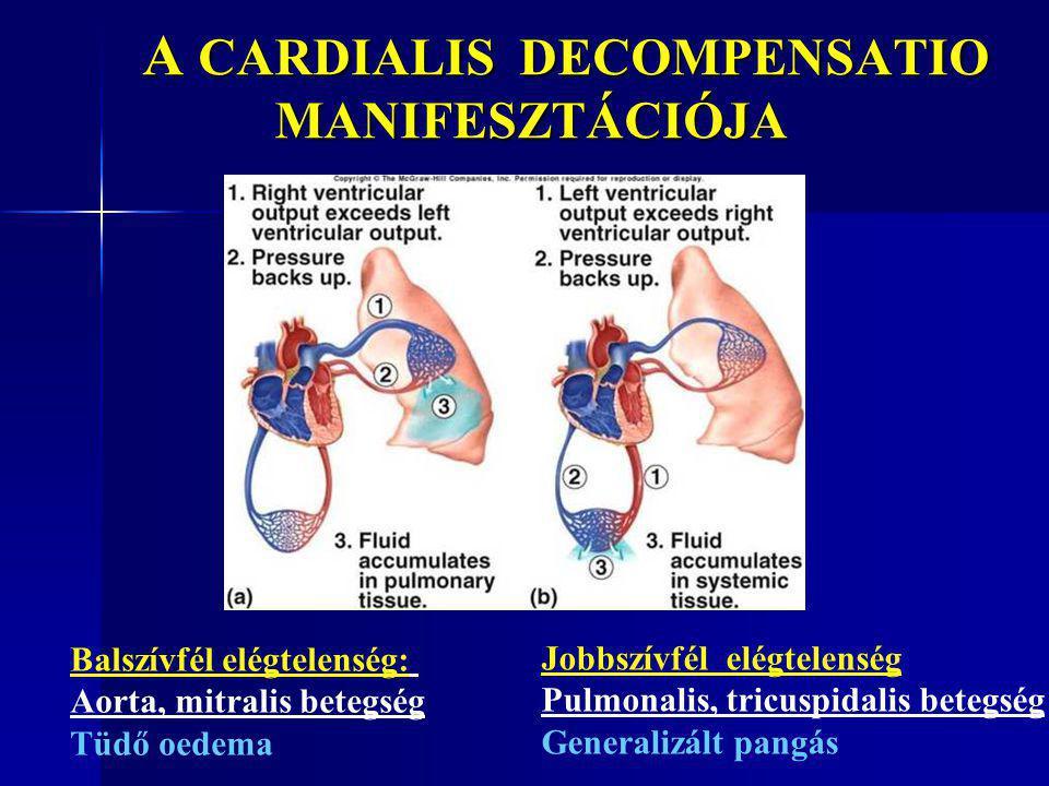 A CARDIALIS DECOMPENSATIO MANIFESZTÁCIÓJA A CARDIALIS DECOMPENSATIO MANIFESZTÁCIÓJA Balszívfél elégtelenség: Aorta, mitralis betegség Tüdő oedema Jobb